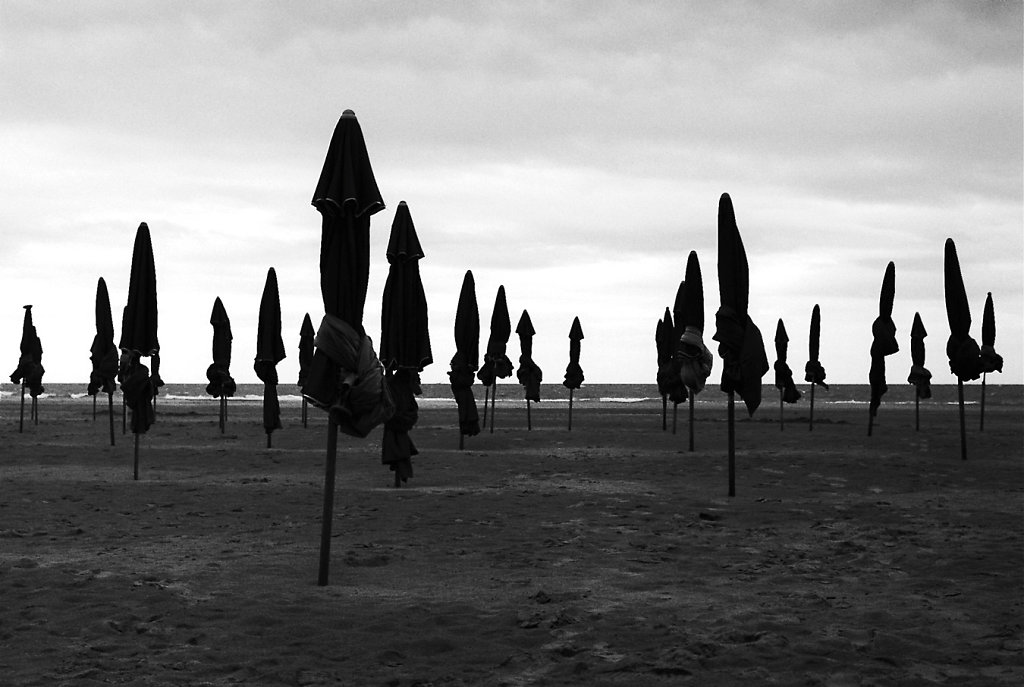 M6-deauville-parasols-3-W-013-2-rd1350.jpg