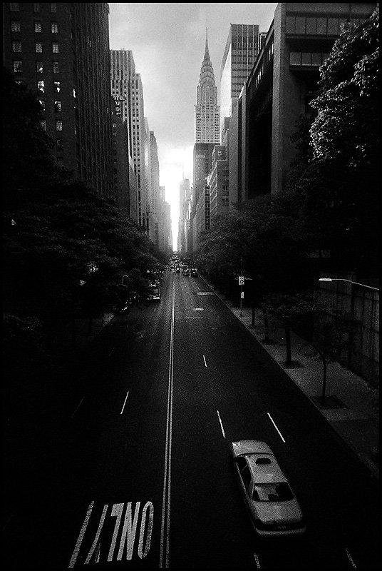 NY-davide287.jpg